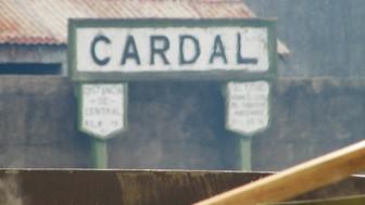 Cardal: ¡taxi, taxi!