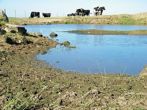 La situación afecta a familias y pequeños productores.