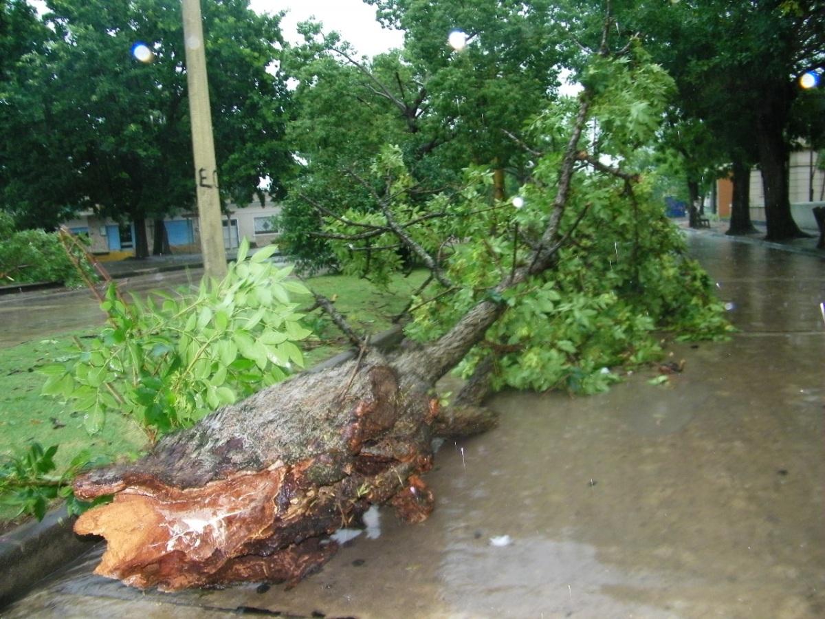 Voladuras, árboles y columnas caídas y activo el Comité de Emergencia