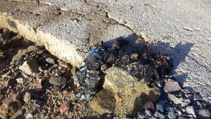 golpe de destrozo y mugre en rambla y ciclovía (16)