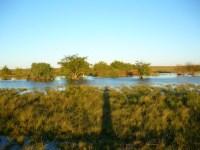En el arroyo Sauce, un joven murióahogado.