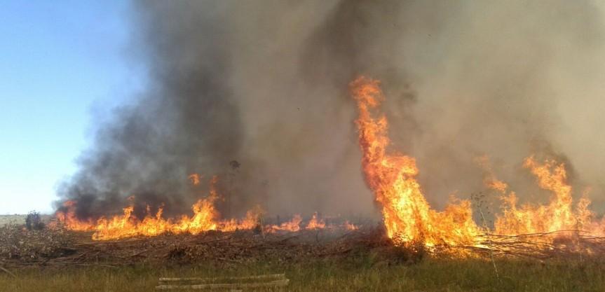 Bomberos controlan incendio en más de 50 hectáreas en SarandíGrande