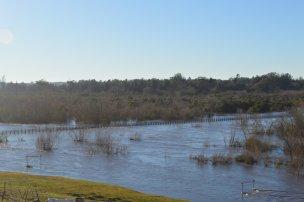 Otra toma de la inundación.
