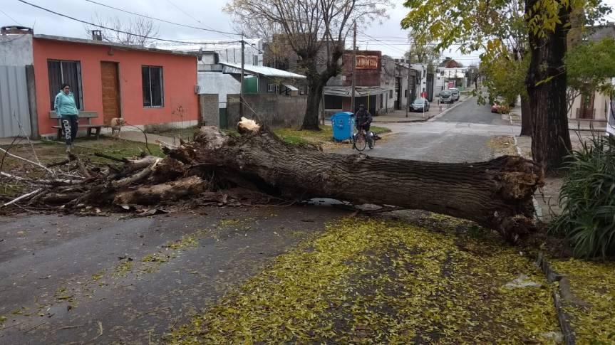 Vientos del sur: fue sudestada que advirtió Inumet y vuelve asoplar