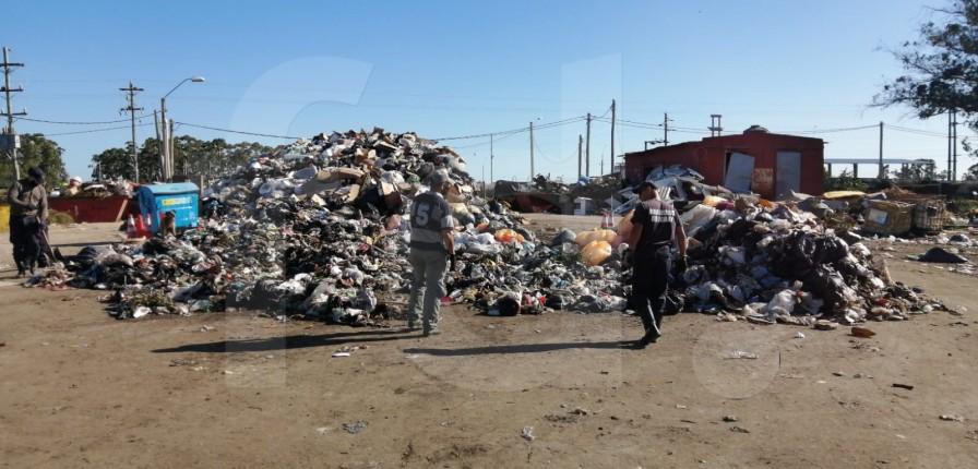 El montículo de residuos de donde se extrajo el cráneo.